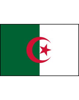 Flag Algeria -