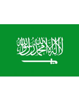 Saudi Arabia - 20 x 30