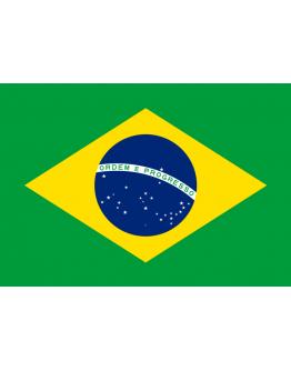 Flag Brazil - 20 x 30