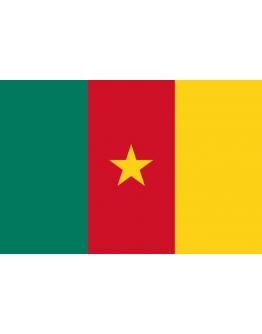 Flag Cameroon