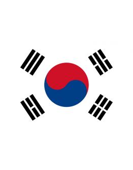 Flag South Korea - 20 x 30
