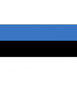 Flag Estonia - 20 x 30