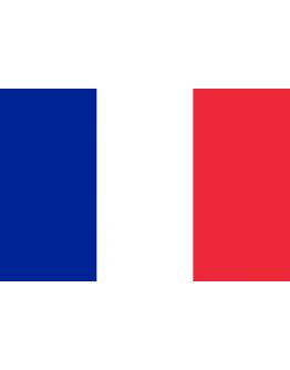Flag France - 20 x 30