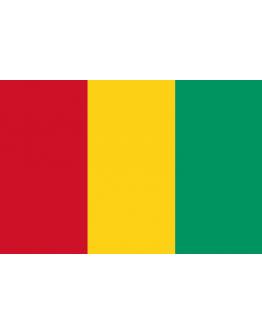 Flag Guinea - 20 x 30