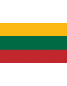 Flag Lithuania - 20 x 30